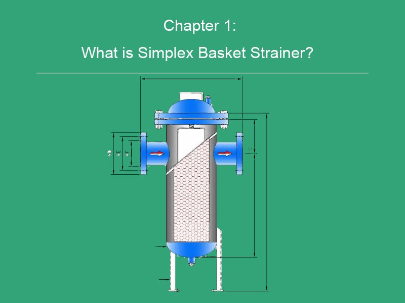 What is Simplex Basket Strainer